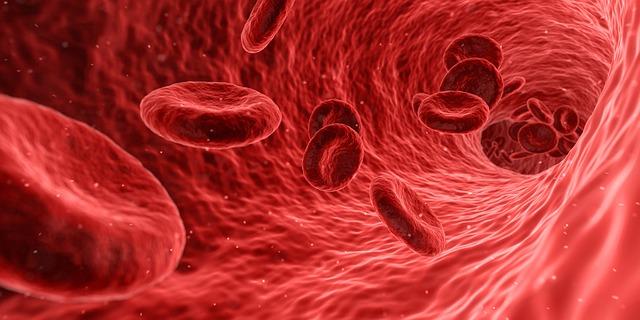 血管の中を赤血球が流れているイラスト