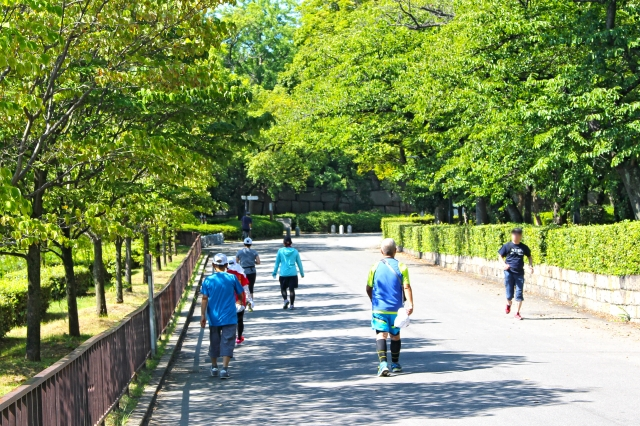 公園を散歩 奈良市整体