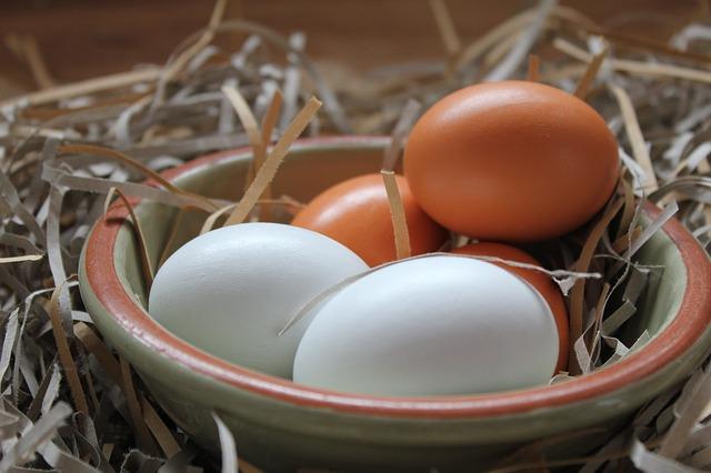 お皿に入った卵