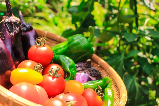 ビタミン豊富な野菜 奈良市整体カイロ